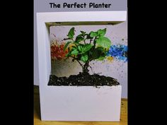 Perfect Planter - the Smartest Planter You Have Ever Seen