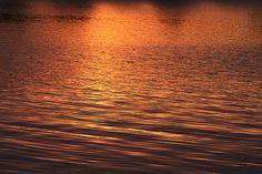 Title:  Golden Reflections  Artist:  Chris Thomas  Medium:  Photograph - Photograph
