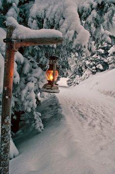 Light the way🕯️ through a Winter Wonderland ❄️ ❄️ ❄️ Erleuchten Sie den Weg durch ein Winterwunderland Winter Szenen, Winter Love, Winter Magic, Winter Light, Snow Light, Winter Walk, Winter Kids, Winter Travel, Autumn Fall