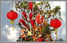 大红灯笼高高挂,马年新春喜洋洋
