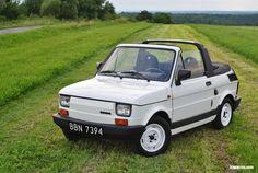 Fiat 500, Fiat Cars, Beetle Car, Fiat Abarth, Vintage Cartoon, Small Cars, Amazing Cars, Maserati, Old Cars