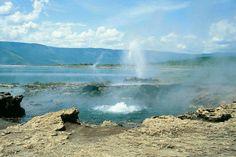 Geysers at Lake Bogoria in Kenya. www.dancomtours.com