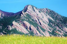 """Summer Sunshine, On The Prairie Grassland, Flat Irons Vista, Boulder County, Colorado"""