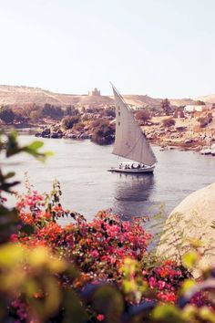 What to see in Aswan | Travel in Egypt | CN Traveller Cool Places To Visit, Places To Travel, Places To Go, Travel Destinations, Egypt Travel, Africa Travel, Tourism In Egypt, Kerala Tourism, Beautiful World