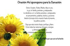 LOS DOCE PASOS DEL HO'OPONOPONO     En 1976 Morrnah Simeona empezó a modificar el proceso tradicional Hawaiano de perdón y arrepentimi...