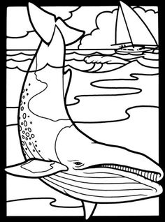 nature :: whale image by tharens - Photobucket
