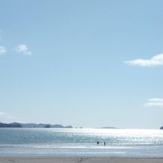 Just had to take a pic on the way home in magical #whitianga