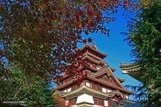 Kyoto la ciudad de los mil templos. José M. López