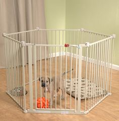 Multi-use containment for puppies or small pets - indoors or out
