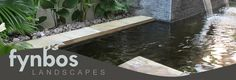 Fynbos Landscapers are installers of Koi Ponds. Have a look at our Koi Pond Galleries Koi Ponds, Tropical Gardens, Garden Spaces, Water Features, Lush, Landscapes, Gallery, Outdoor Decor, Projects