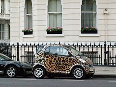 Leopard smart car - with pink interior.  Picture me in the HOV lane in this lil ride!!