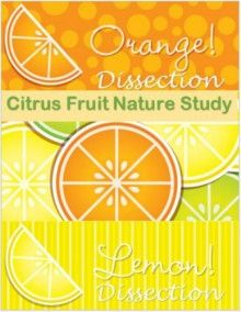 Citrus Fruit Nature Study: Kitchen Science Series - Roots and Wings Homeschool | Nature Studies | CurrClick