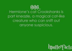 Harry Potter Facts #006