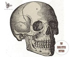 Anatomical Skull - medical creepy scary bones halloween modern needlecraft  pdf cross stitch pattern - INSTANT DOWNLOAD