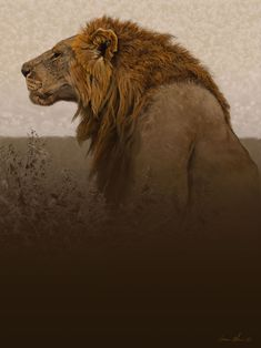 Lion Portrait by Aaron Blaise Represented by Travis Foster