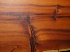PACIFIC YEW Sapwood is usually a thin band of pale yellow or tan color,  while the heartwood is an orangish brown, sometimes with a darker ...