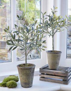 fake olive trees