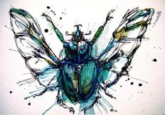 Watercolor Animals by Abby Diamond Watercolor Paintings Of Animals, Pen And Watercolor, Animal Paintings, Natural Form Art, Bug Art, Collage Techniques, Insect Art, Diamond Art, Diamond Rings