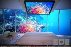 インド洋の島国モルディブに建設が計画されている海中ホテルの客室の完成予想図。(c)Relaxnews/Water Discus Hotel/Deep Ocean Technology ▼14Jun2013AFP|スタートレック風「海中ホテル」、インド洋の楽園モルディブに建設へ http://www.afpbb.com/articles/-/2950388