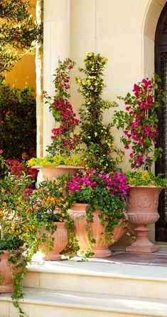 Echoes of ancient Mediterranean civilizations resonate in this stunning terra cotta pottery. Drawing on classic Italian designs, these garden planters call for noble placement on a sweeping veranda or in a quaint courtyard.  | Frontgate: Live Beautifully Outdoors