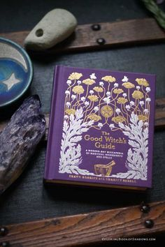 A really fun witchcraft book! The Good Witch's Guide by Shawn Robbins and Charity Bedell. Check out this list of more favorite witchcraft books, spell books, and other witchy things to read.