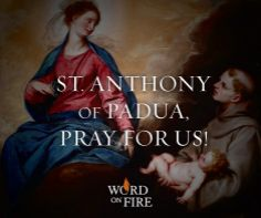 St. Anthony of Padua, pray for us!  Find more at http://WordOnFire.org.