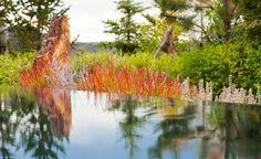 jardin paysager, piscine contemporaine