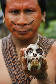 O professor Makê Matis, da Aldeia Tawaya, na margem do Rio Branco, no Vale do Javari, Amazonas, exibe o crânio de um macaco. Makê cobra do governo capacitação de professores e melhoria das escolas indígenas. Dida Sampaio/AE.