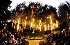 The lights lit up the scene perfectly for a nighttime wedding...