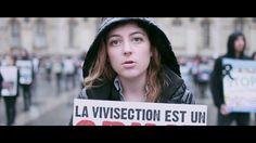 """12 MINUTES - Épisode 4 : """"VIVISECTION"""" (st : En, De, It, Pt, Ro, Fr)"""