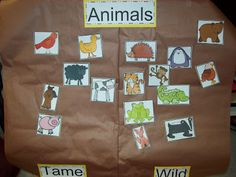 This chart categorizes animals into two categories: tame and wild. Printable Animal Pictures, Printable Animals, Tame Animals, Funny Animals, Wild Animals Pictures, Animal Habitats, Animal Activities, Kindergarten Science, Jungle Animals