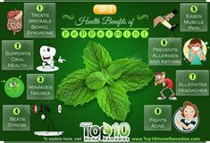 Peppermint is a hybrid herb – a cross between spearmint and watermint. It is a popular flavoring for chewing gum, candy, toothpaste and mouthwash. Its flavor is a cross between pepper and chlorophyll Top 10 Home Remedies, Home Remedies For Hair, Hair Loss Remedies, Natural Home Remedies, Herbal Remedies, Health Remedies, Massage Benefits, Health Benefits, Health Tips
