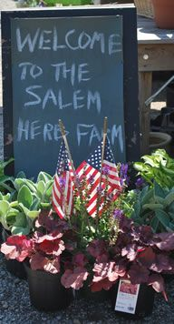 One of my favorite places to run away to! Salem Herb Farm, Salem Ct.