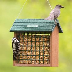Eco-Strong Seed Block Feeder