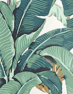 Hinson - Martinique / Green. Iconic.