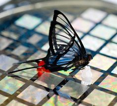 Robotic butterfly
