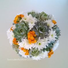 """Succulent plant gift by Urban Succulents - is a great way to say thank you! This planter comes with a premium succulent in a ceramic oval container that has a smooth white matte finish. It comes planted.  Oval container measures 5.5""""l x 4.4w x 2.5h"""