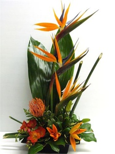 Naicam Flowers and Gifts - Birds of Paradise Tropical Flower Arrangements, Modern Floral Arrangements, Ikebana Flower Arrangement, Church Flower Arrangements, Silk Arrangements, Tropical Flowers, Fresh Flowers, Wedding Cakes With Flowers, Table Flowers
