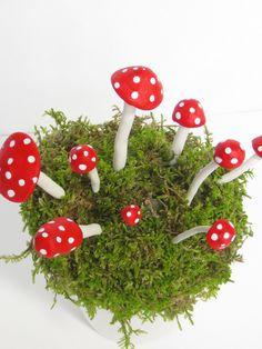 Terrarium Red Mushrooms, Terrarium Accessories, Red Top Clay Mushroom, Fairy Garden Accessory Black Mushrooms, Miniature Mushrooms.