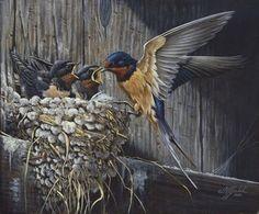 Goebel Trademark Global Wilhelm 'Country Barn Swallows' Canvas Art - 14 x 19