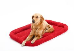 Bwiv Pet Cushion Bed Dog Mat Sofa House Winter Summer Dual Use Large-sized Dog Medium-sized Dog Small Dog Resting Place A · Red XL