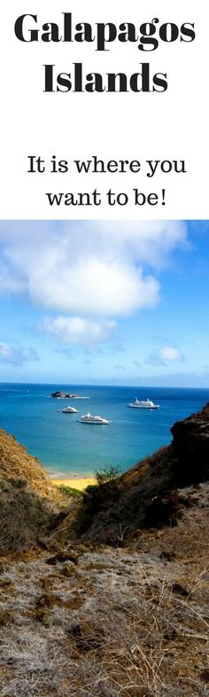 What is it really like on an Ecoventura yacht in the Galapagos? - http://PointsandTravel.com
