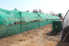 Jabulani Foundations For Farming Training - Morester Child and Youth Care Centre, KZN (South Africa) Home Grown Vegetables, Farming, South Africa, The Help, Centre, Healthy Living, Youth, Training, Child