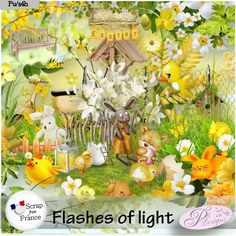 Flashes of Light by Pli Designs http://scrapfromfrance.fr/shop/index.php?main_page=index&cPath=88_130 http://digital-crea.fr/shop/index.php?main_page=index&manufacturers_id=151