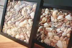 Seashell Shadowboxes. Image via It's the Little Things that Make a House a Home | e-Expeditions