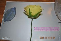 Мастер-класс Лепка МК по лепке розы Часть4-оформление стебля Фарфор холодный фото 1
