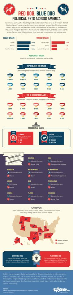 Do Republicans love little dogs? Do Democrats go wild for designer breeds? Rover.com dug into its data and compared it…