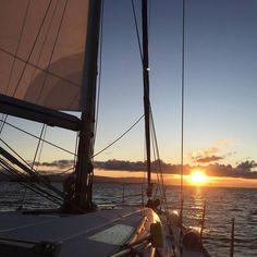 Sailing Cruises, Sailing Trips, Victoria, Sunshine Coast Bc, Cruise Italy, Italy Holidays, Cruise Holidays, Float Your Boat, Vancouver Island