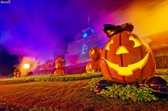 Boo to You - Happy Halloween! by Tom Bricker (WDWFigment), via Flickr