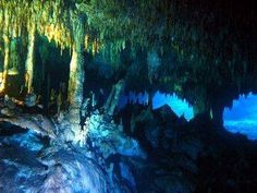 DCM Dive Cenotes Mexico scuba dive shop specializes in cenotes cavern and cave diving services, including guiding and training between Playa del Carmen and Tulum